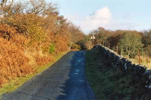 Road to Kildalton