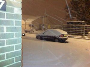 Lots of Snow !