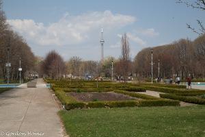 Avenue of the Island